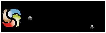 Steinmassage_Logo_Einzeilig-01.png