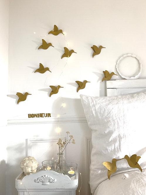Envolée de jolis colibris