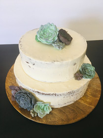 Two-tiered succulent cake