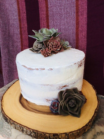 Semi-Naked Cake with White Chocolate Succulents