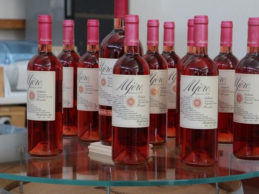 Apulia (Salento wines)