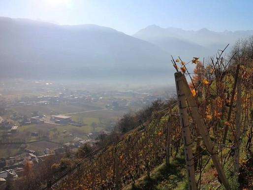 Lombardy (Valtellina)
