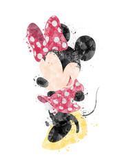 Minnie Mouse Inspired Character