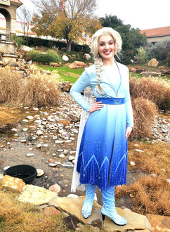 Frozen 2 Elsa Inspired Character (Adventure Outfit)