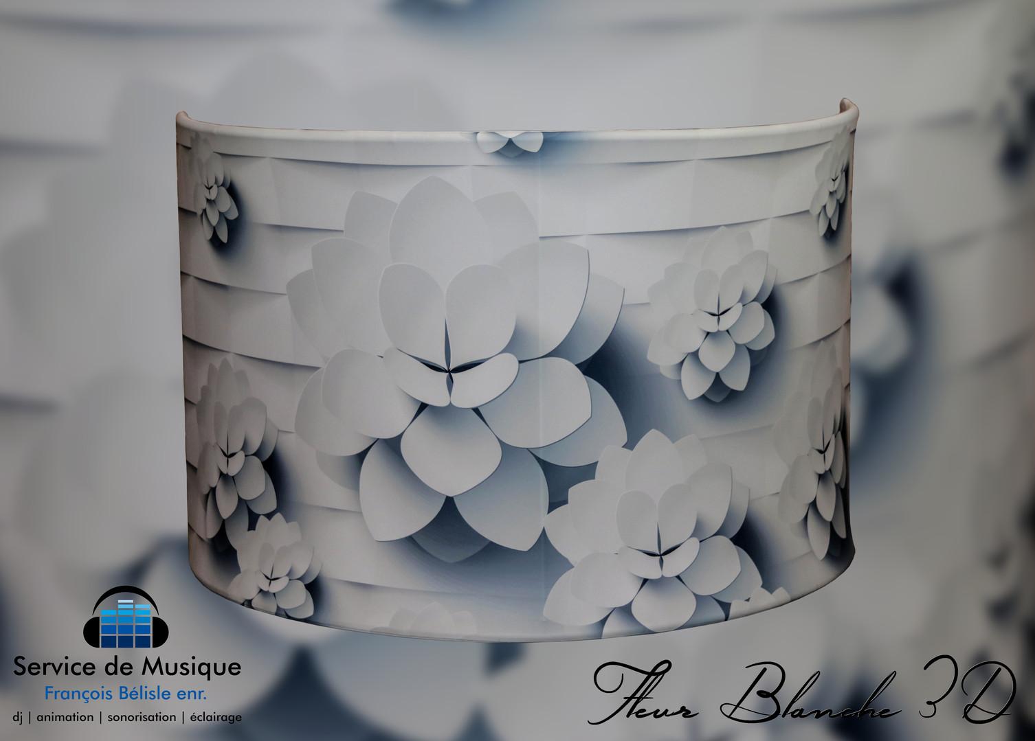 Facade Fleur Blanche 3D.jpg