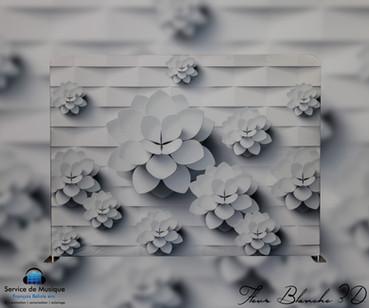 Toile Fleur Blanche 3D