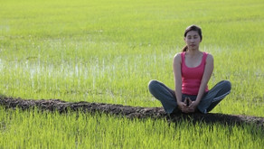 Struggling with Mindfulness- curiosity may be key