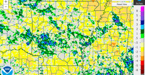 Rainfall Checkup