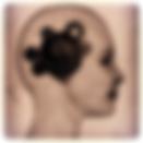 Formation psychanalyse montpellier