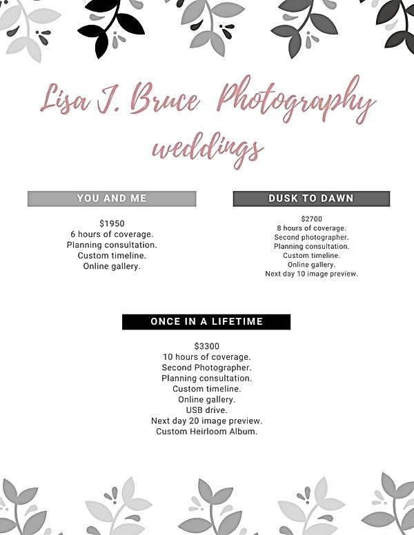 Lisa J. Bruce Photographyweddings (1).pn