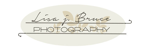 Lisa J Bruce Logo.jpg