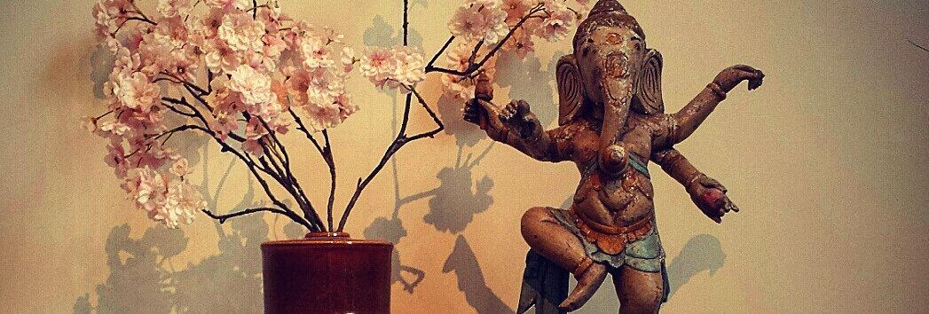 Yoga Today_IMG_7533.jpg