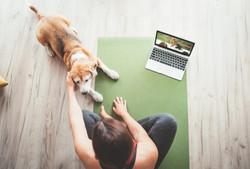 Global Flow Online Yoga Retreat
