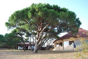 Montevelho Portugal