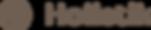 Holistik_logo_grey.png