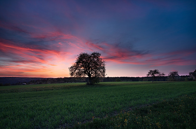 - PERFECT SUNSET -
