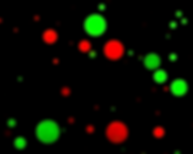 Droplets (Red and Green).tif