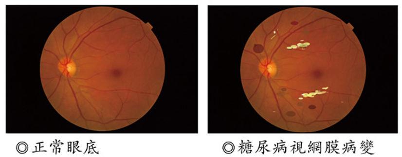 680p5-optical.jpg