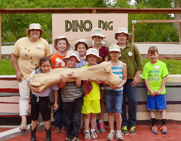 The Dino Dig