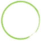 LM-circle-brush-background-green.png