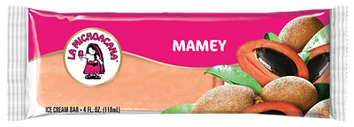 00021 - La Michoacana Mamey Paleta Ice Cream Bar