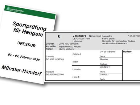 Coreandro an der Sportprüfung in Münster-Handorf