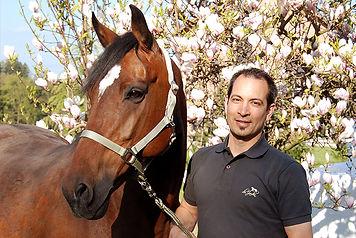 Holsteiner Pferdezucht Du Jardin / Schweiz / David Fux