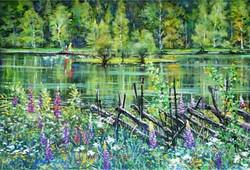 湖畔のルピナス