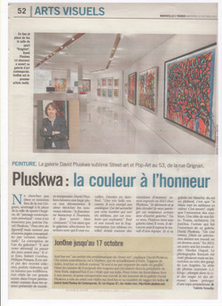 PLUSKWA ARTICLE PRESSE