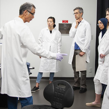 How is CAMiLoD Empowering Researchers With Their Advanced Microscopy Services?