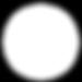 FC Logo White.png