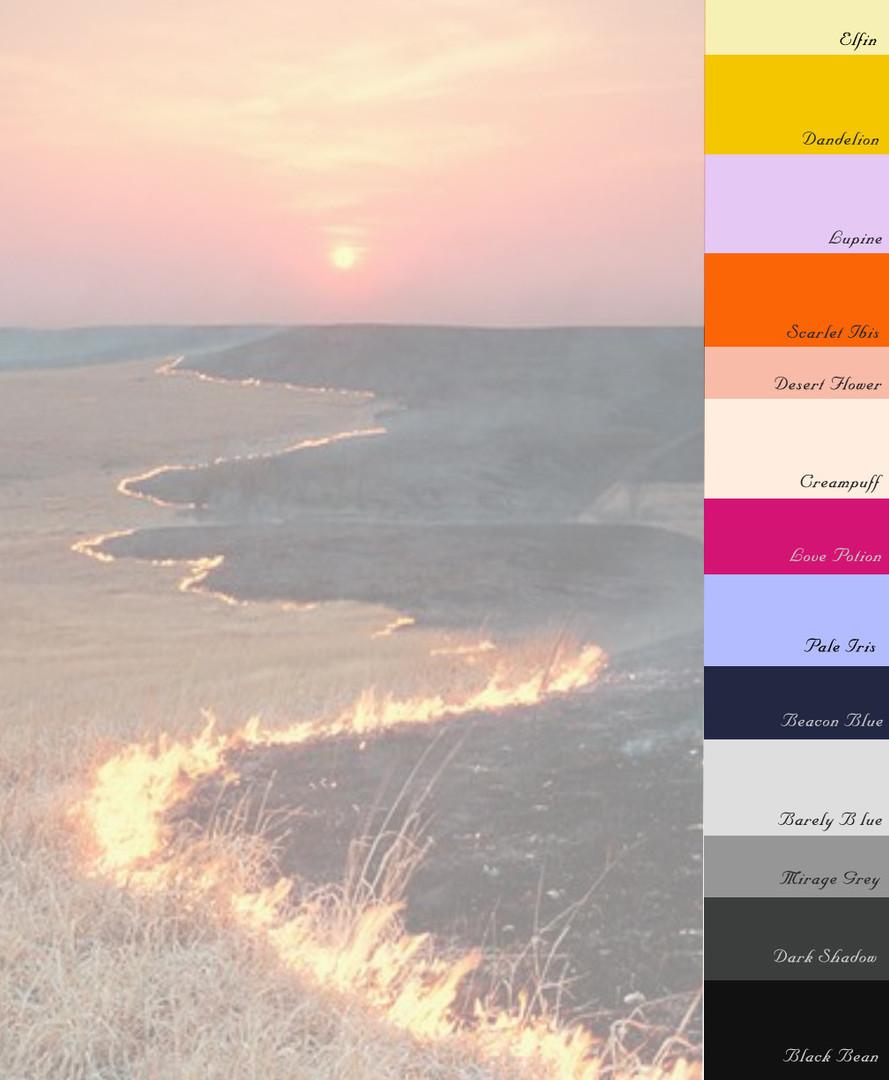 color_page.JPG