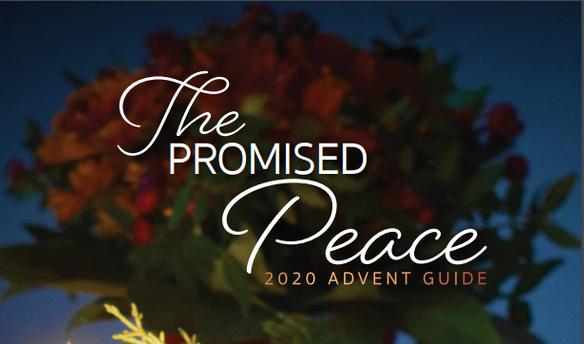 Tallowood Baptist Church, Advent 2020, Promised Peace Advent: Sticks and Stones, Page 13