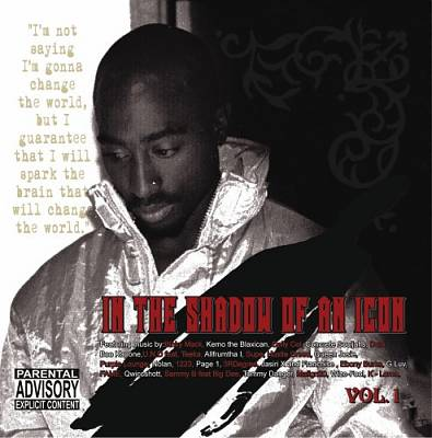 In the Shadow of An Icon_2 PAC