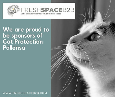 Fresh Space poster.jpg