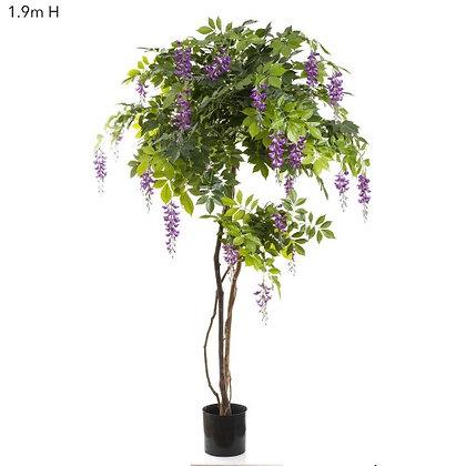 1.9mt Wisteria Purple -  DBW52961PUFB
