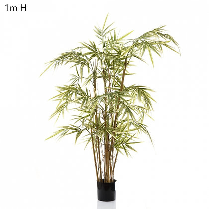 Royal Bamboo 1mt with 7 Stems 800 Leaves