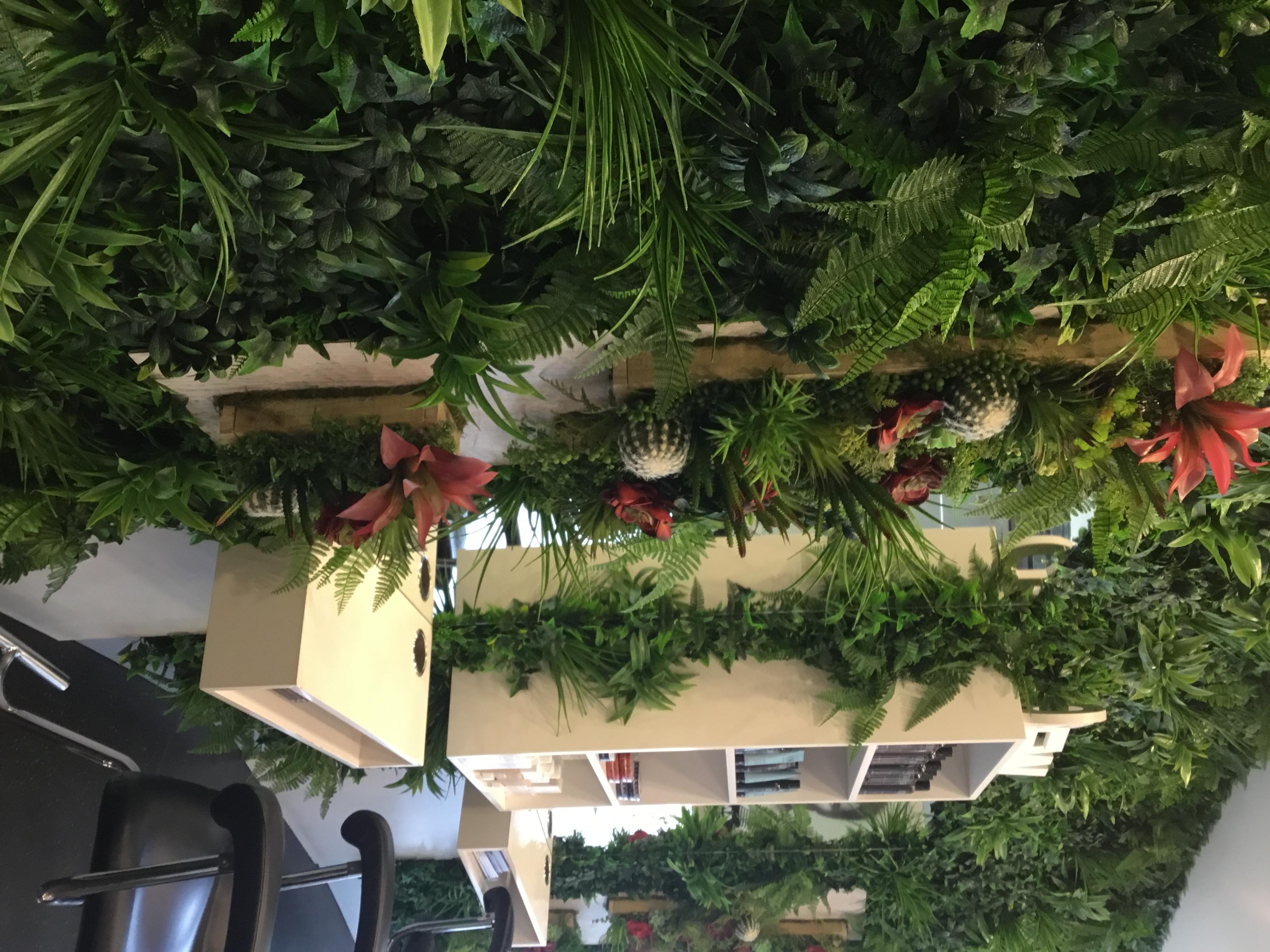 Green Tropics Wall