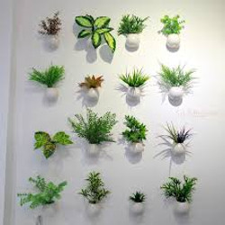 Assorted wall mounted plants