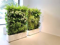 Portable Hedge/Screens