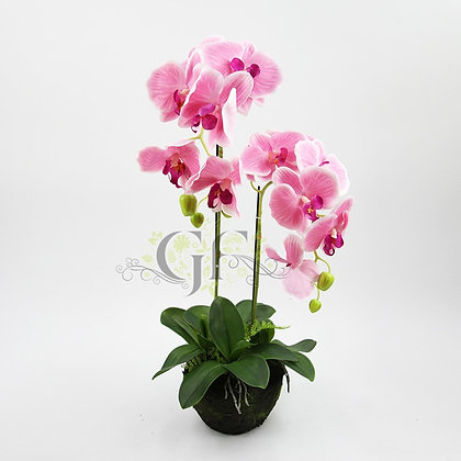 75cm Rugged Soil Orchid GF60318 - Purple