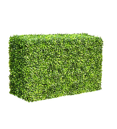 Deluxe Buxus Hedge (Bright) 100W x 50H x 25D