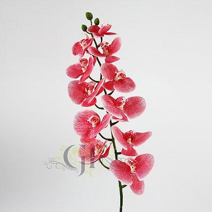 105 Phalaenopsis Orchid GF60388 - Red