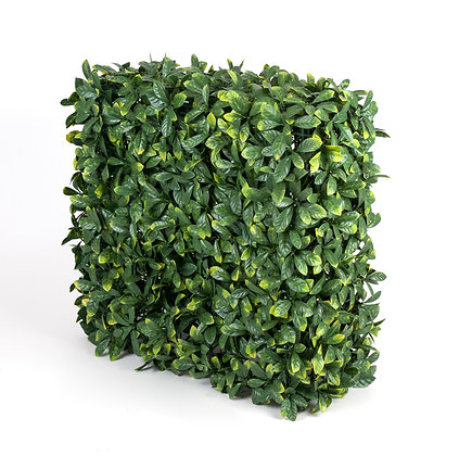 Laurel Hedge UV Stabilised 75Hx75Wx25D