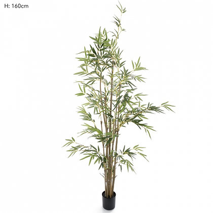 Bamboo Tree Natural Trunk  823 Leaves  1.6mts