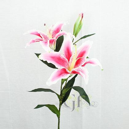 92cm Tiger Lily GF60161 - Hot Pink