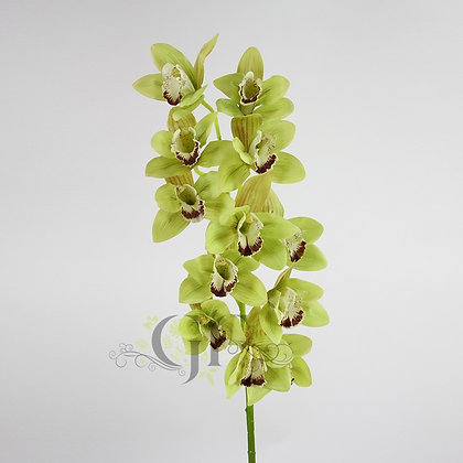 105cm Cymbidium Orchid  GF60386 - Green