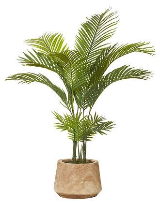 Areca Palm in Dansk Pot 100x100x137cm