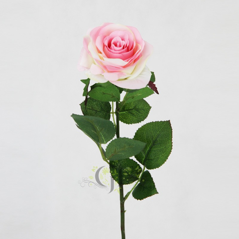 Roses Peonies & Magnolias