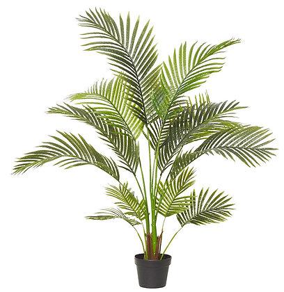 Areca Palm 90x90x120cm
